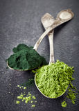 Two spoons of spirulina algae and wheat sprouts powder. Two silver spoons of spirulina algae and wheat sprouts powder Stock Photos