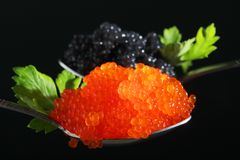 Free Two Spoons With Red And Black Caviar Stock Image - 152095401