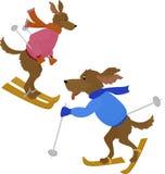 Two sport Dog symbol 2018.Cartoon vector dog Stock Image