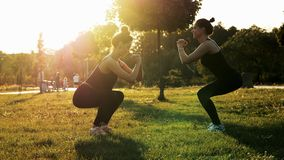 Two sports women training and squat together in the park at sunset. Fitness, aerobics and stretching exercises, healthy stock footage