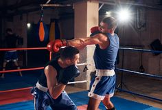 Boxers training kickboxing in the ring at the health club stock photos