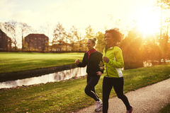 Two sportswomen running in park. In the evening sun Stock Photography