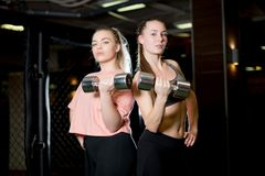 Two sporty girls with dumbbells in the gym