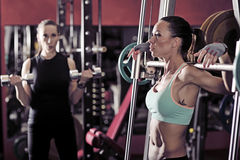 Two sporty woman in the gym. Picture of young womans making exercise at the gym stock photos