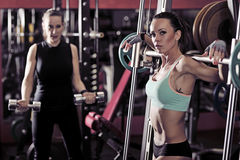 Two sporty woman workout in the gym. Picture of young womans making exercise at the gym royalty free stock photo