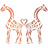 Two spotty giraffes and a heart of tails.  Stock Images