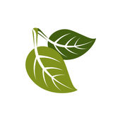 Two spring leaves simple  icon, nature and gardening theme Royalty Free Stock Photo