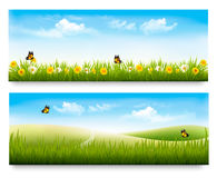 Two spring meadow banners with grass and flowers. Vector Royalty Free Stock Image