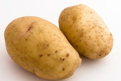 Two spuds. Of the oblong form, on light background close-up, located in frame displaced to upper right corner royalty free stock photos