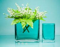 Two square glass vases with flowers on blue Stock Image