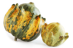 Two squash Royalty Free Stock Images