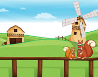 Two squirrels above the fence across the barnhouses Royalty Free Stock Photo