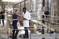 Two Staff Talking In A Modern Winemaking Factory, Close Up Royalty Free Stock Photos
