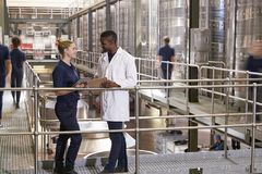 Two staff talking in a modern winemaking factory, close up stock images