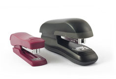 Two staplers Royalty Free Stock Photo
