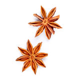 Two star anise Stock Images