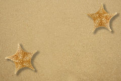 Two star fish on the sand Stock Photo