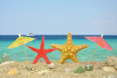 Two star fishes with paper umbrellas Royalty Free Stock Photography