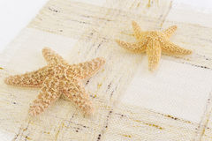Two starfish isolated Stock Photos