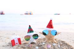 Two starfish on sea beach with sunglasses and santa hat for Merry Christmas and New Years royalty free stock photography