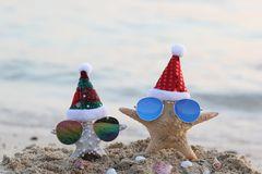 Two starfish on sea beach with sunglasses and santa hat for Merry Christmas and New Years royalty free stock images