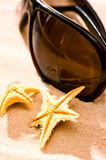 Two starfish sunglasses on beach Royalty Free Stock Photo