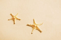 Two starfishes on the beach. Summer holiday background for adver Stock Photo
