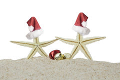 Two starfishes and christmas bells Royalty Free Stock Images