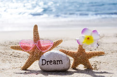 Two Starfishes with rock on the beach Royalty Free Stock Image