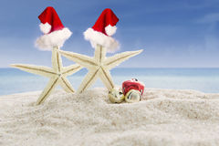 Two starfishes with Santa hats at beach Stock Photo