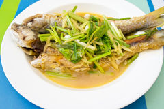 Two steamed mackerel fishes with ginger Royalty Free Stock Photos