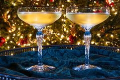 Two stems of champagne in front of a Christmas tree. royalty free stock images