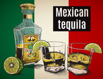 Two stemware of  tequila with bootle. Background is a Mexican flag.Vector illustration Royalty Free Stock Photo