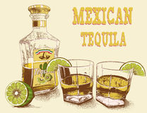 Two stemware of tequila with bottle. And lime. Vintage poster.Vector illustration Royalty Free Stock Photos