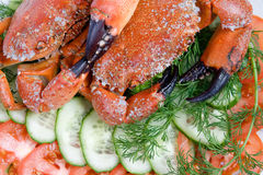 Two stone crabs on a plate Royalty Free Stock Photo