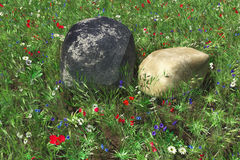 Two stones against flowers Royalty Free Stock Image