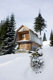 Two-storeyed wooden house concealed by snow royalty free stock image
