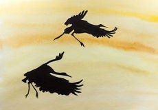 Two stork in flight Royalty Free Stock Photography
