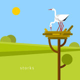 Two stork in the nest. Beautiful storks build their nest. Vector flat illustration stock illustration