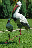 Two storks on a green lawn Stock Photos