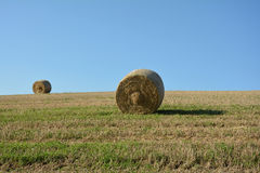 Two Straw bales on harvested field. Straw bales on harvested field with a hay bales in horizon and blue sky stock image