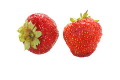 Two strawberries Royalty Free Stock Photo