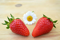 Two strawberries and daisy flower Royalty Free Stock Photos
