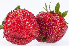 Two strawberries isilated on white background Stock Images