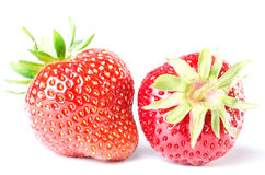 Two strawberries isolated before white Stock Photo