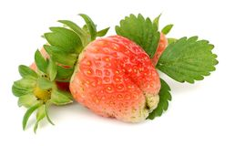 Two strawberries isolated on white Royalty Free Stock Photos