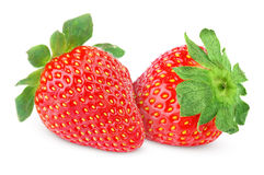 Two strawberry fruits Royalty Free Stock Image
