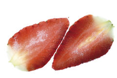 Two strawberry slices, close-up Royalty Free Stock Photography