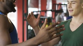Two strong guys meeting at gym and agreeing to workout together, slow-motion. Stock footage stock video footage