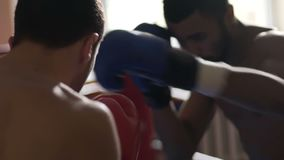 Two strong men boxing, fighting fiercely to win match, competitive spirit, sport. Stock footage stock video footage